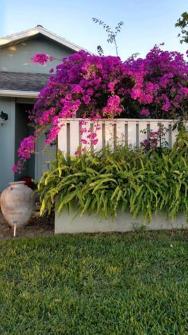6694 SE Yorktown Drive, Hobe Sound, FL 33455 (#RX-10502779) :: Ryan Jennings Group