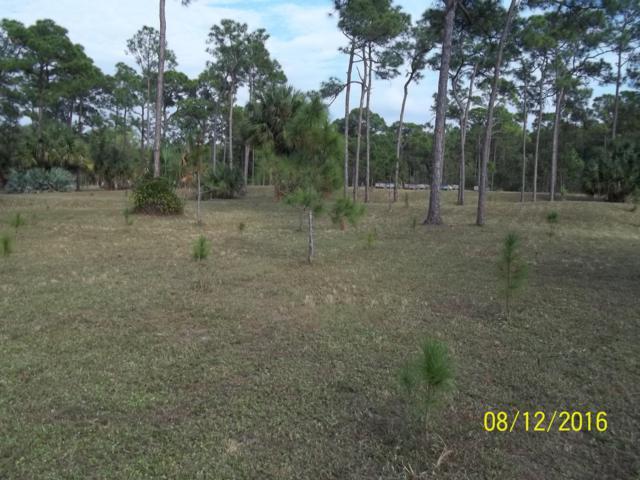 3798 Cabbage Palm Way, Loxahatchee, FL 33470 (#RX-10506483) :: Ryan Jennings Group