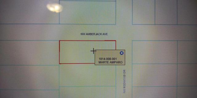 00 Redwood Road, Dunnellon, FL 34431 (MLS #RX-10508959) :: Berkshire Hathaway HomeServices EWM Realty