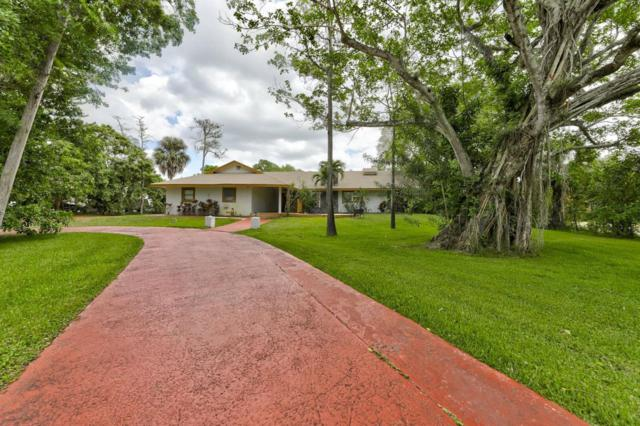 6220 NW 77th Terrace, Parkland, FL 33067 (#RX-10514305) :: The Reynolds Team/Treasure Coast Sotheby's International Realty