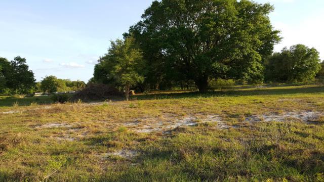 16855 NW 272nd Street, Okeechobee, FL 34972 (#RX-10514574) :: Blue to Green Realty