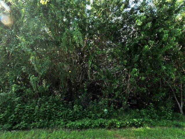 296 SW Millard Drive, Port Saint Lucie, FL 34953 (#RX-10519735) :: Weichert, Realtors® - True Quality Service