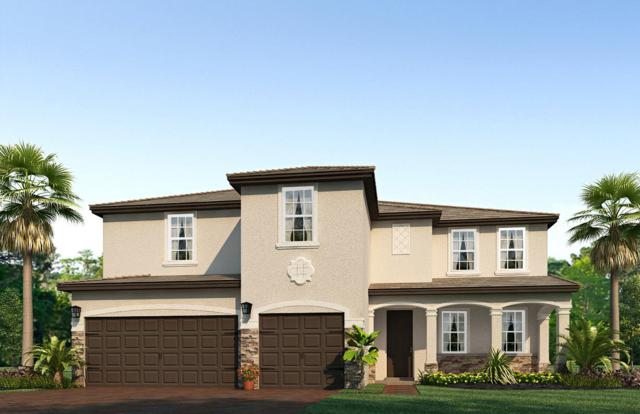 2521 SW Berry Park Circle, Palm City, FL 34990 (#RX-10523987) :: The Reynolds Team/Treasure Coast Sotheby's International Realty