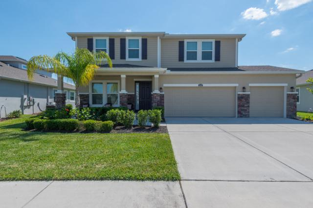 32442 Bannack Lane, Wesley Chapel, FL 33543 (#RX-10525917) :: Ryan Jennings Group