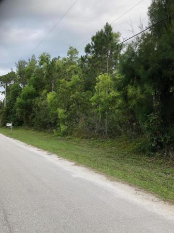9069 Pinion Drive, Lake Worth, FL 33467 (#RX-10532485) :: The Reynolds Team/Treasure Coast Sotheby's International Realty