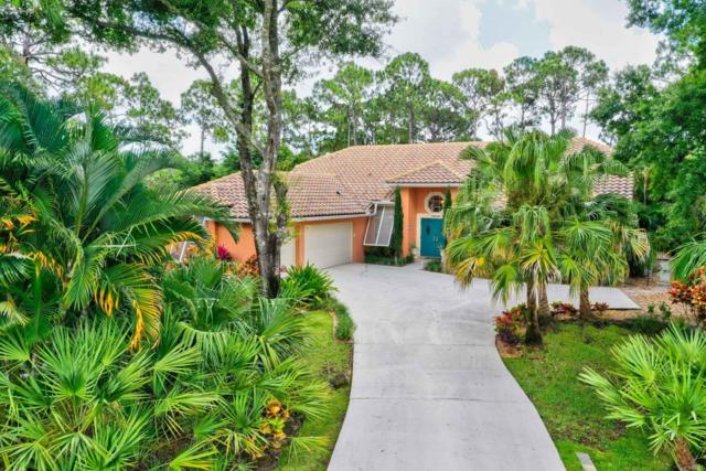 19009 SE Old Trail Drive W, Jupiter, FL 33478 (#RX-10532538) :: The Reynolds Team/Treasure Coast Sotheby's International Realty