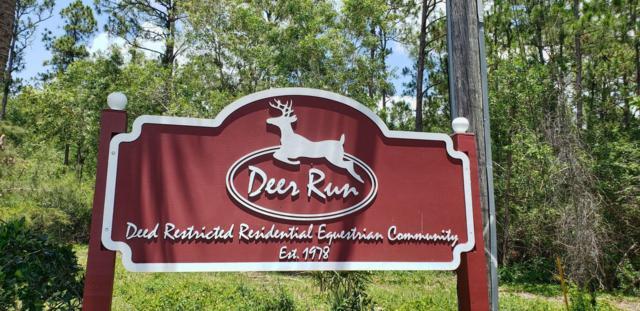 2377 Fawn Drive, Loxahatchee, FL 33470 (#RX-10533353) :: Ryan Jennings Group