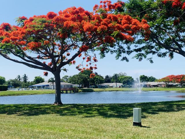 230 E High Point Court C, Delray Beach, FL 33445 (MLS #RX-10534030) :: EWM Realty International