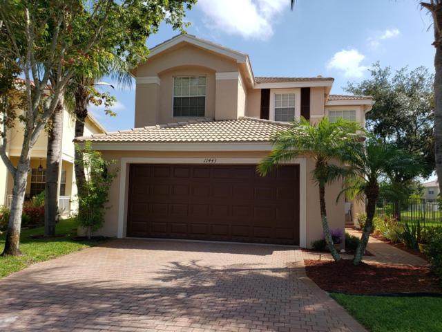 11443 Silk Carnation Way, Royal Palm Beach, FL 33411 (MLS #RX-10534511) :: EWM Realty International
