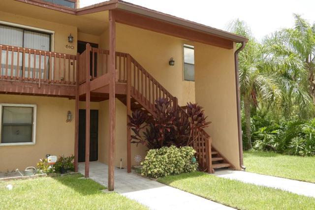 609 Lakeview Drive E, Royal Palm Beach, FL 33411 (MLS #RX-10538362) :: EWM Realty International