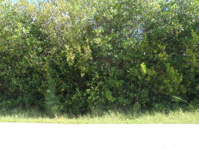 Xxx S Ocean Drive, Hutchinson Island, FL 34949 (MLS #RX-10539029) :: Berkshire Hathaway HomeServices EWM Realty