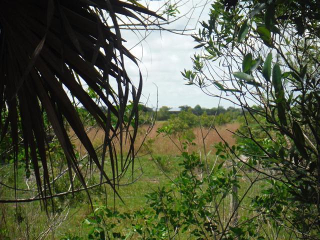 0 Carlton Road, Port Saint Lucie, FL 34987 (MLS #RX-10539067) :: EWM Realty International