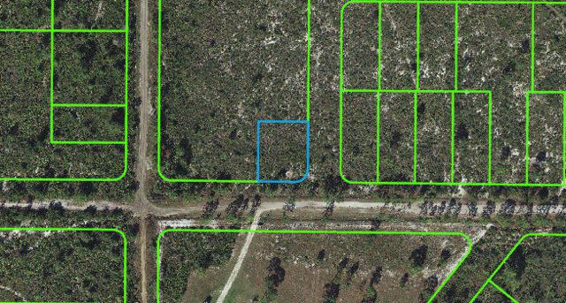 730 Tulip Street, Lake Placid, FL 33852 (MLS #RX-10542468) :: Berkshire Hathaway HomeServices EWM Realty