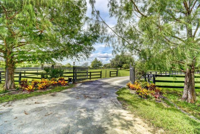 16820 Deer Path Lane, Wellington, FL 33470 (MLS #RX-10545540) :: Berkshire Hathaway HomeServices EWM Realty