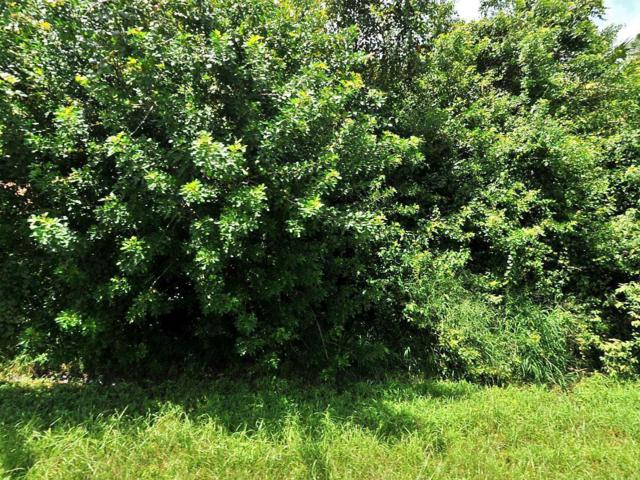 2514 SW Dawn Street, Port Saint Lucie, FL 34953 (#RX-10545743) :: Ryan Jennings Group