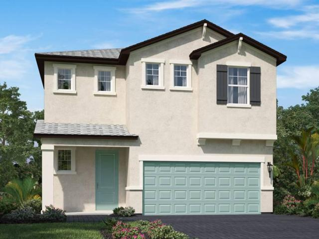 1905 Harding Street, Lake Worth, FL 33460 (MLS #RX-10546745) :: The Edge Group at Keller Williams