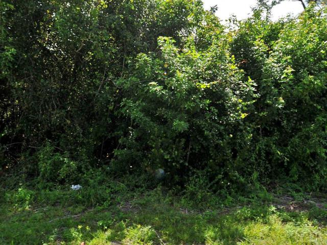 260 SW Marathon Avenue, Port Saint Lucie, FL 34953 (#RX-10551177) :: Ryan Jennings Group