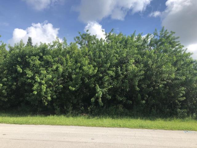 110 SW Ladybug Drive, Port Saint Lucie, FL 34953 (#RX-10551525) :: Ryan Jennings Group