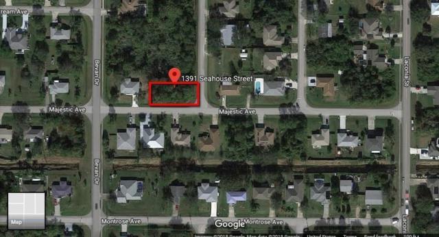 1391 Seahouse Street, Sebastian, FL 32958 (#RX-10552463) :: Ryan Jennings Group