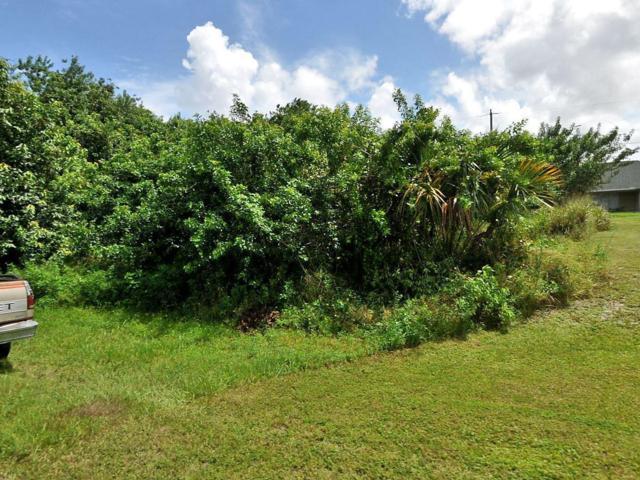 962 SW Mcelroy Avenue, Port Saint Lucie, FL 34953 (#RX-10554267) :: Weichert, Realtors® - True Quality Service