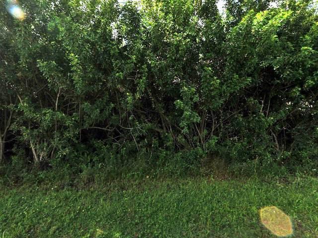 374 SW Fig Avenue, Port Saint Lucie, FL 34953 (#RX-10560072) :: Ryan Jennings Group