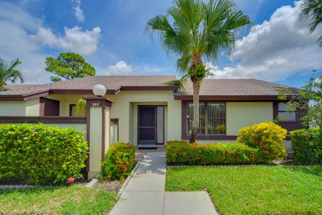 393 Oxen Hill Court, Royal Palm Beach, FL 33411 (#RX-10561141) :: Weichert, Realtors® - True Quality Service