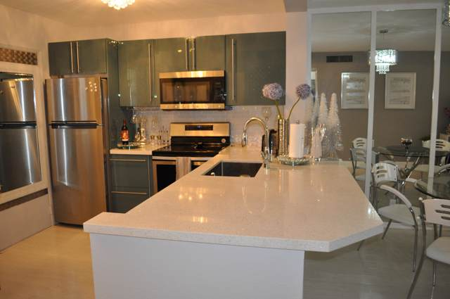 1001 NE 14th Avenue #204, Hallandale Beach, FL 33009 (MLS #RX-10567532) :: Castelli Real Estate Services