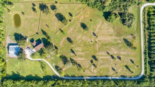4451 148th Terrace N, Loxahatchee Groves, FL 33470 (MLS #RX-10574170) :: Laurie Finkelstein Reader Team