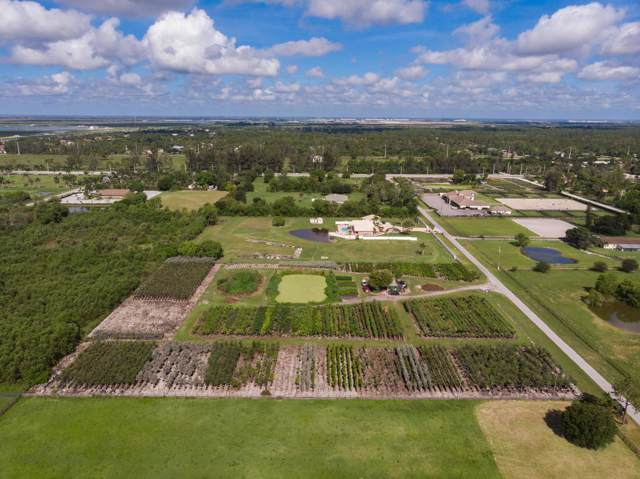16424 Van Gogh Road, Loxahatchee, FL 33470 (MLS #RX-10575947) :: Laurie Finkelstein Reader Team