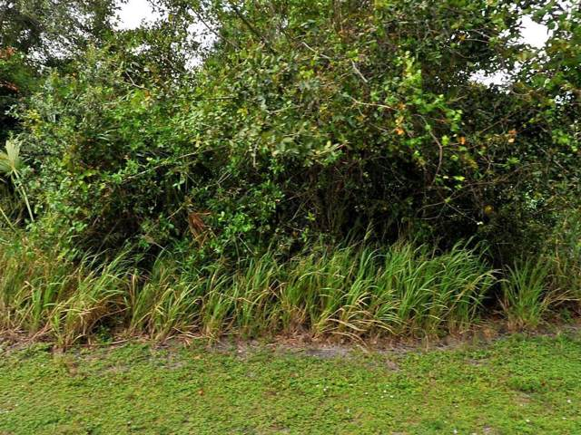 1782 SW Bayshore Boulevard, Port Saint Lucie, FL 34984 (MLS #RX-10581282) :: Berkshire Hathaway HomeServices EWM Realty