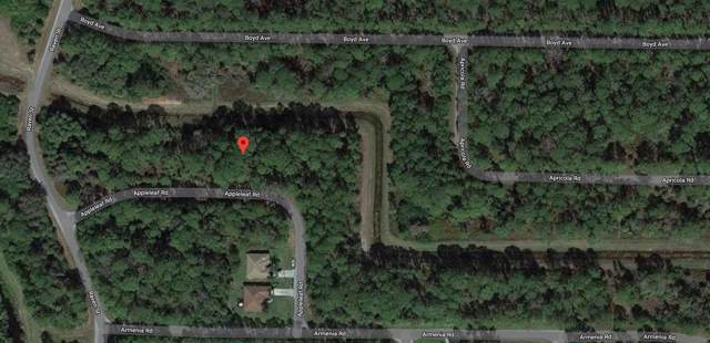 36 Appleleaf Road, North Port, FL 34286 (#RX-10583539) :: Ryan Jennings Group