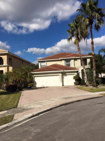 11071 Laurel Walk Road, Wellington, FL 33449 (#RX-10583902) :: Ryan Jennings Group