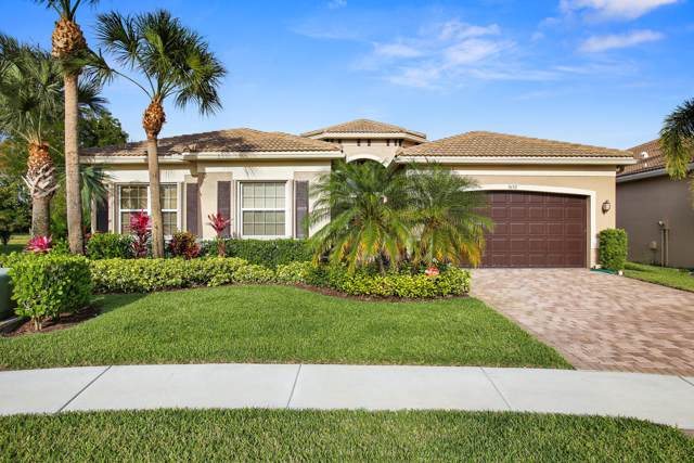 9692 Dovetree Isle Drive, Boynton Beach, FL 33473 (#RX-10588576) :: Ryan Jennings Group