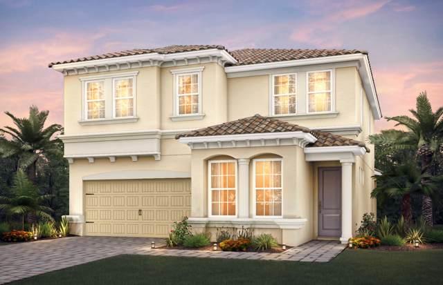 1453 Myrtle Oak Terrace, Hollywood, FL 33021 (#RX-10590620) :: Ryan Jennings Group