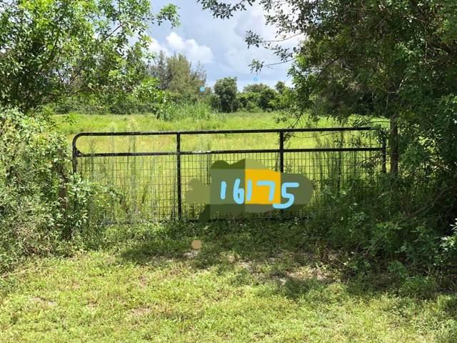 16175 Deer Path Lane, Wellington, FL 33470 (MLS #RX-10593690) :: Berkshire Hathaway HomeServices EWM Realty