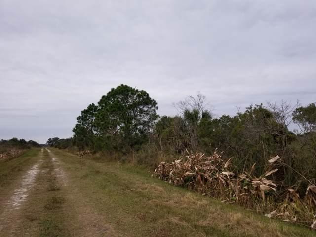 20009 NW 246th Street, Okeechobee, FL 34972 (#RX-10596368) :: The Rizzuto Woodman Team