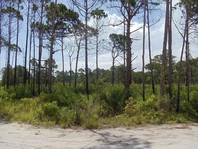 0 Top Trail, Fort Pierce, FL 34951 (#RX-10599514) :: Ryan Jennings Group