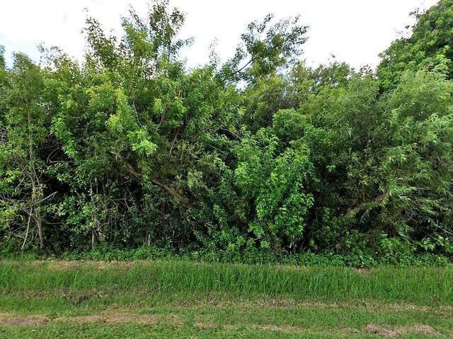 2401 River Branch Drive, Fort Pierce, FL 34981 (#RX-10599956) :: Ryan Jennings Group
