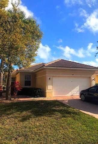 659 NW Stanford Lane, Port Saint Lucie, FL 34983 (#RX-10600055) :: Ryan Jennings Group