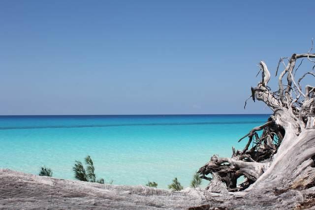 510 Bimini Bahamas, Out Of Country, FL 00000 (MLS #RX-10600126) :: Berkshire Hathaway HomeServices EWM Realty