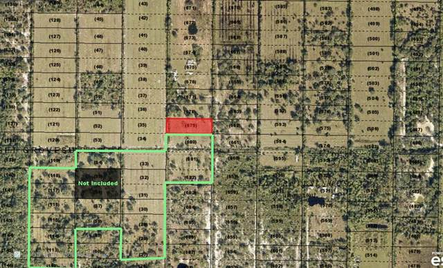 Xxxx SW Arrowroot Street, Indiantown, FL 34956 (MLS #RX-10600466) :: The Paiz Group