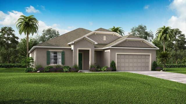 1826 SW Fears Avenue, Port Saint Lucie, FL 34953 (#RX-10602429) :: The Reynolds Team/ONE Sotheby's International Realty