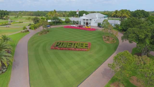 10677 Pine Tree Terrace, Boynton Beach, FL 33436 (MLS #RX-10602836) :: Berkshire Hathaway HomeServices EWM Realty