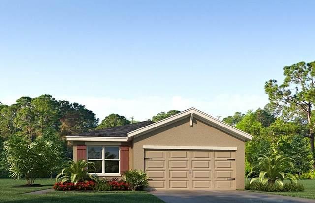11160 SW Hadley Street, Port Saint Lucie, FL 34987 (#RX-10612080) :: Ryan Jennings Group