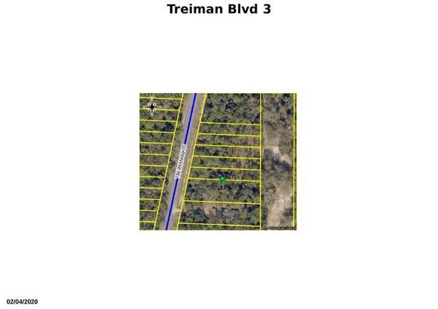 Tbd Treiman Boulevard, Webster, FL 33597 (#RX-10616227) :: Ryan Jennings Group