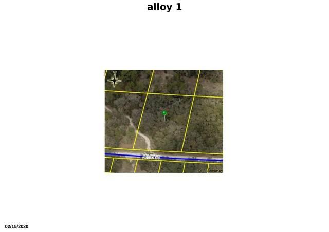 Tbd Alloy Street, Webster, FL 33597 (#RX-10616270) :: Ryan Jennings Group