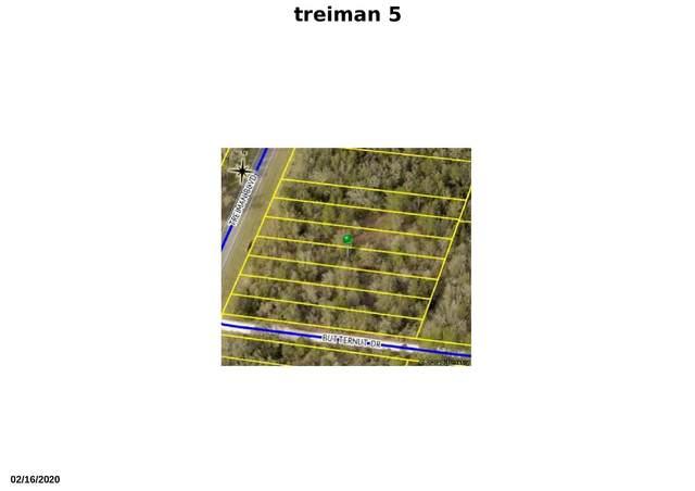 Tbd Treiman Boulevard, Webster, FL 33597 (#RX-10616273) :: Ryan Jennings Group