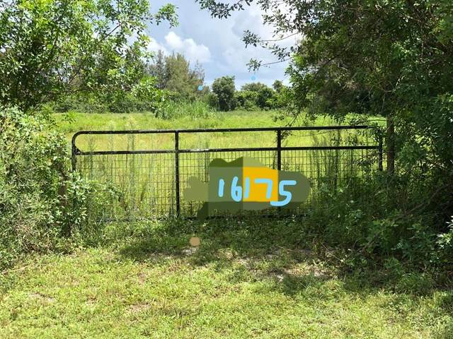 16175 Deer Path Lane, Wellington, FL 33470 (MLS #RX-10617706) :: Berkshire Hathaway HomeServices EWM Realty