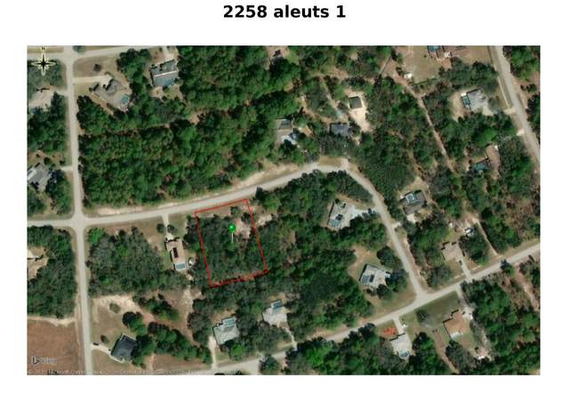 2258 W Aleuts Drive, Beverly Hills, FL 34465 (#RX-10619501) :: Ryan Jennings Group