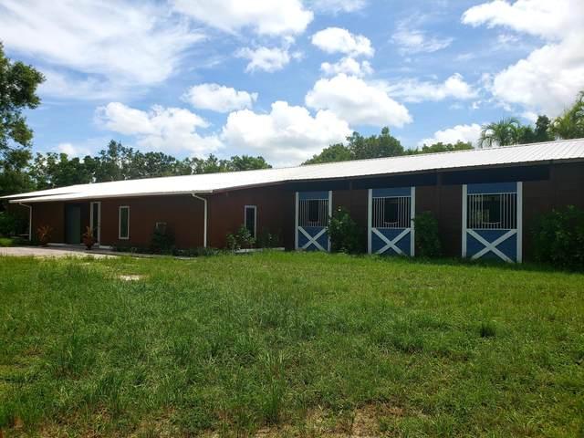 3707 D Road, Loxahatchee Groves, FL 33470 (MLS #RX-10619552) :: Castelli Real Estate Services